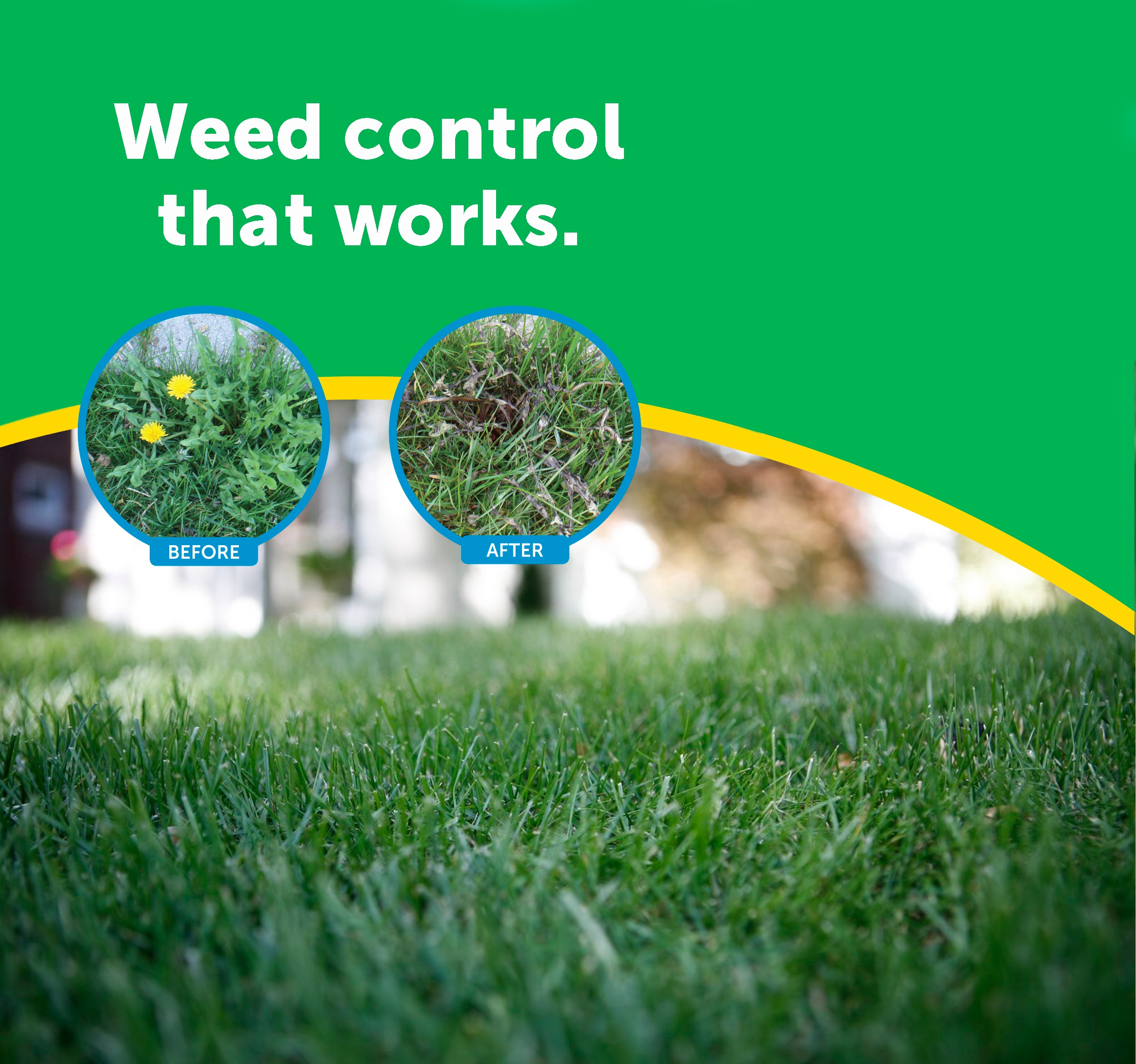 weed control and monitoring in tuff Our basic annual lawn care real green pest and lawn customize your lawn with professional grade products and fight the tough  3 pre-emergent weed control.